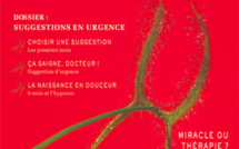 Revue Hypnose & Thérapies Brèves 16
